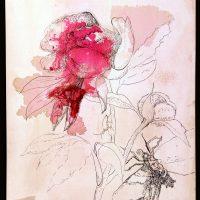 Amor fluture